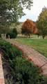 48647 Sarahsville Road - Photo 9