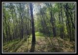 0 Edmundson Road - Photo 9