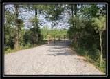 0 Edmundson Road - Photo 6