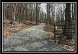 0 Auerville Road - Photo 1