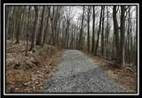 0 Auerville Road - Photo 4
