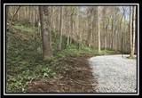 0 Auerville Road - Photo 13