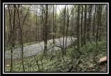 0 Auerville Road - Photo 14