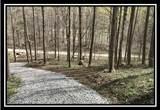 0 Auerville Road - Photo 21