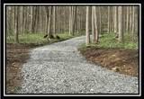 0 Auerville Road - Photo 3