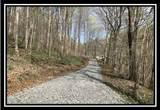 0 Auerville Road - Photo 5