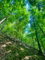 5 Hide-A-Way Hills - Photo 3