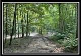 10775 Township Road 402 - Photo 30