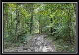 10775 Township Road 402 - Photo 32