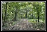 10775 Township Road 402 - Photo 8
