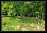 10405 Lithopolis Road - Photo 34