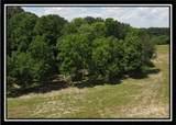 10405 Lithopolis Road - Photo 42