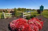 5805 Willow Lake Drive - Photo 34
