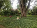 7948 Washington Park Drive - Photo 14