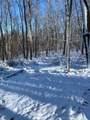 41.3 Acres Techniglas Road - Photo 5