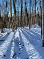 41.3 Acres Techniglas Road - Photo 3