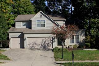 292 Tree Haven Avenue, Powell, OH 43065 (MLS #216037525) :: Cutler Real Estate