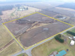 0 Township Road 49, Lexington, OH 44904 (MLS #217003226) :: Core Ohio Realty Advisors