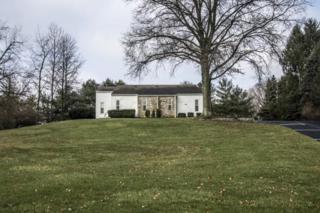 3643 Ridenour Road, Gahanna, OH 43230 (MLS #217008226) :: Core Ohio Realty Advisors