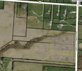 0 Carter S Corner Road, Sunbury, OH 43074 (MLS #217009874) :: Core Ohio Realty Advisors