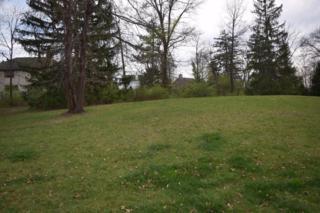 445 Hamilton Court Lot #13, Gahanna, OH 43230 (MLS #217011019) :: Core Ohio Realty Advisors