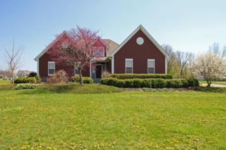 4120 N Three B S & K Road, Sunbury, OH 43074 (MLS #217011392) :: Core Ohio Realty Advisors