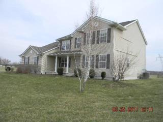 16348 London Road, Orient, OH 43146 (MLS #217011573) :: Core Ohio Realty Advisors