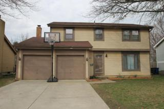 5259 Spring Beauty Court, Columbus, OH 43230 (MLS #217011680) :: Core Ohio Realty Advisors