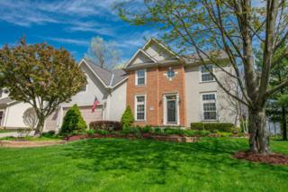 322 Tree Haven Avenue, Powell, OH 43065 (MLS #217012199) :: Cutler Real Estate