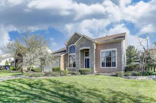 2429 Parklawn Drive, Lewis Center, OH 43035 (MLS #217012225) :: Core Ohio Realty Advisors