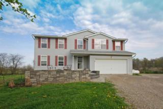 1999 Blayney Road, Sunbury, OH 43074 (MLS #217012521) :: Core Ohio Realty Advisors