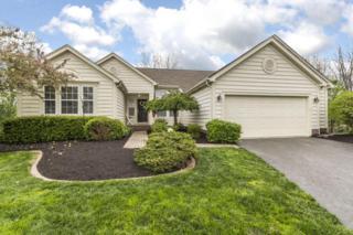 46 Timber Oak Court, Powell, OH 43065 (MLS #217012557) :: Core Ohio Realty Advisors