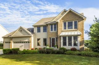 2923 Brookhaven Drive, Lewis Center, OH 43035 (MLS #217012689) :: Core Ohio Realty Advisors