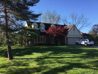 8888 Turin Hill Court S, Dublin, OH 43017 (MLS #217012719) :: Core Ohio Realty Advisors