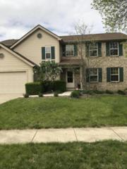 5664 Pleasant Hill Drive, Hilliard, OH 43026 (MLS #217012885) :: Core Ohio Realty Advisors