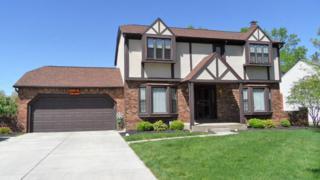 135 S Hempstead Road, Westerville, OH 43081 (MLS #217012950) :: Core Ohio Realty Advisors