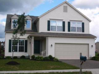 776 Sauter Lane, Blacklick, OH 43004 (MLS #217012984) :: Core Ohio Realty Advisors
