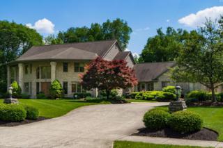 561 Laurel Ridge Drive, Gahanna, OH 43230 (MLS #217016098) :: Core Ohio Realty Advisors