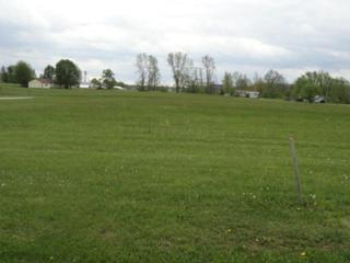 7326 State Route 19 Unit 2, Lots 23, Mount Gilead, OH 43338 (MLS #217016117) :: Core Ohio Realty Advisors