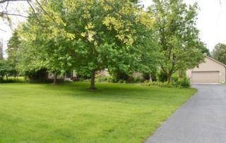 7280 Merchant Road, Plain City, OH 43064 (MLS #217016164) :: Core Ohio Realty Advisors