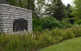 301 Abbotsbury Drive, Westerville, OH 43082 (MLS #217017341) :: Core Ohio Realty Advisors