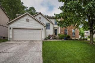768 Lindenhaven Road, Gahanna, OH 43230 (MLS #217017638) :: Core Ohio Realty Advisors