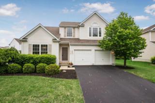 6148 Crossmont Court, New Albany, OH 43054 (MLS #217017735) :: Core Ohio Realty Advisors