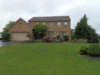 3871 Bluff Drive, Lewis Center, OH 43035 (MLS #217017743) :: Core Ohio Realty Advisors