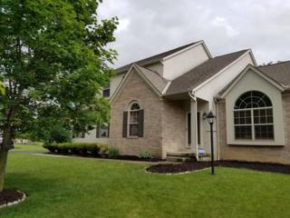 6671 Estate View Drive N, Blacklick, OH 43004 (MLS #217017807) :: Core Ohio Realty Advisors