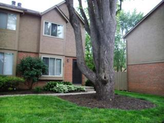 6460 Cranston Way #29, Dublin, OH 43017 (MLS #217017887) :: Core Ohio Realty Advisors
