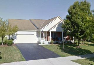 8962 Bakircay Lane, Powell, OH 43065 (MLS #217017972) :: Core Ohio Realty Advisors