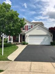6570 Hemmingford Drive, Canal Winchester, OH 43110 (MLS #217017976) :: Core Ohio Realty Advisors