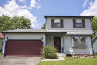 3880 Maidens Larne Drive, Columbus, OH 43221 (MLS #217017990) :: Core Ohio Realty Advisors