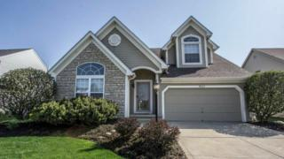 8641 Oak Creek Drive, Lewis Center, OH 43035 (MLS #217017609) :: Core Ohio Realty Advisors